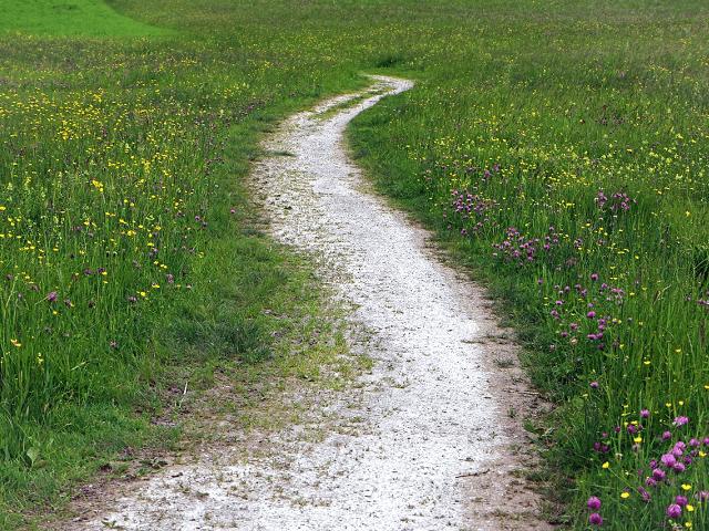 新しい時代の到来に、新しい気持ちで歩いて行きましょう